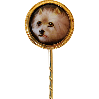 Antique Painted Enamel Dog Portrait By John William Bailey ~ Sweet Terrier Stick Pin