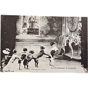 Antique French Postcard ~  Performing Trick Dogs