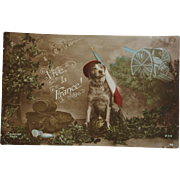 WW1 French Postcard ~ War Dog C1915