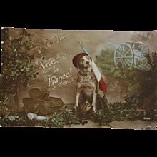 WW1 French Postcard ~ War Dog C1915