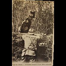 French WW1 Postcard ~ Soldier With War Dog
