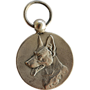 1934 Silver Dutch Medal ~ German Shepherd Dog Award