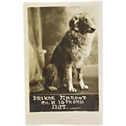 WW1 Dog Mascot Postcard - Co. H 10th Ohio Infantry