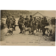 French WW1 Postcard ~ Ambulance/Red Cross Dogs