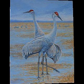 Large Oil Painting ~ Sandhill Cranes