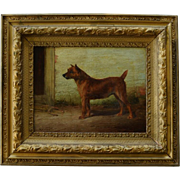 Antique Dog Painting Of An Irish Terrier ~  By William Henry Hamilton Trood (1860-1899)