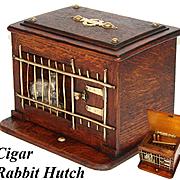 Delightful Antique Victorian Oak Cigar, Cheroot Presenter, Box: a Rabbit Hutch with Mechanical Opener