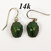 RARE Antique Victorian Earrings, REAL Scarab Beetle set in 14k Gold