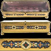 Superb Antique French Glove or Jewelry Box, Vitrine Top, Elaborate Kiln-fired Cloisonne Enamel