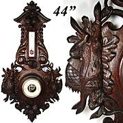 "HUGE 44"" Antique Black Forest Carved Oak Wall Barometer, Thermometer: HUNT Motif with Dog, Hare & Game Bird"