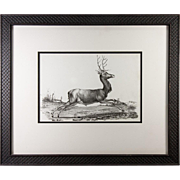 Antique Stone Litho Print of a Stag, Buck, Hunt Theme Aat, Elegant Frame
