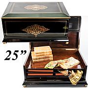 """HUGE 25"""" Antique French Box, Casket, Cashmeres Chest, Trousseau Boulle Boîte a' Chales, c.1850"""