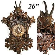 """Spectacular Antique Black Forest 26"""" Cuckoo Clock Case, Hunt Theme Figural: Furderer Jaegler & Cie Marked"""
