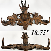 "Antique Black Forest 18.75"" Crop or Hat Rack, Fine Ibex, Natural Horn, Hand Carved c. 1880"