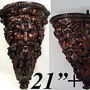 """Huge 21"""" Antique Hand Carved Corner Bracket Shelf, Bacchus Figural Carving c1800"""