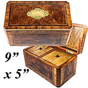 Antique French Napolen III Era Double Well Tea Caddy, Elegant Exotic Wood Box, Brass Trim, Inlay
