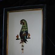 Vintage Folk Art Butterfly Wing Parrot