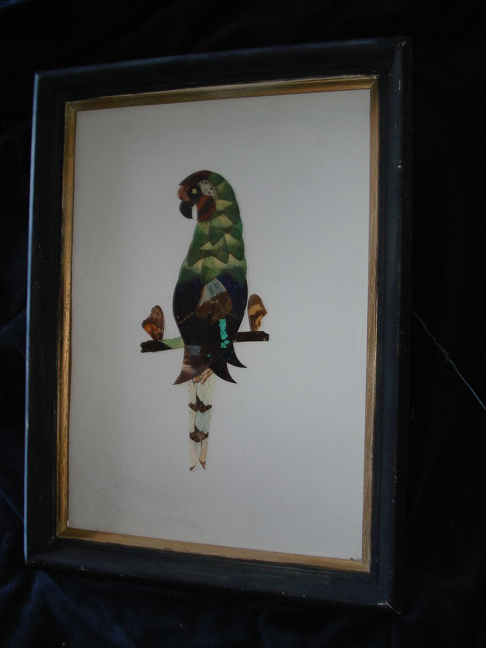Vintage Folk Art Butterfly Wing Parrot