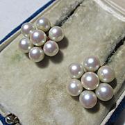 Vintage Mid Century Creamy Cultured Akoya Saltwater Cluster Pearl Earrings in 14K Gold