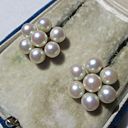 Vintage Mid Century Creamy Cultured Akoya Saltwater Cluster Pearl Earrings in 14K Gold