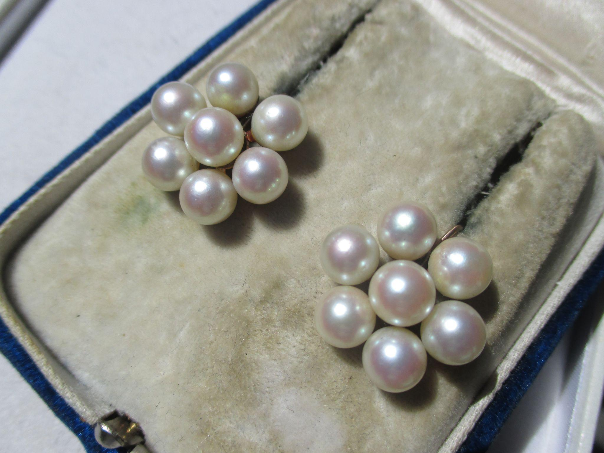 Shop Special! Vintage Mid Century Creamy Cultured Akoya Saltwater Cluster Pearl Earrings in 14K Gold