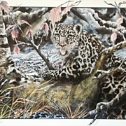 Midnight Snow Leopard Limited Edition Artist Proof 1990 Jason Denaro m/nm