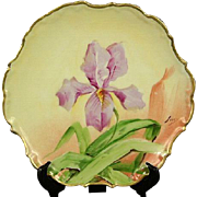 Porcelain Limoges Flambeau Iris Plate, Factory Decorated, Artist Signed