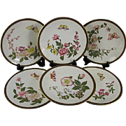 Set of 6 Antique Royal Worcester Cabinet Plates, Butterflies and Flowers