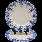 2 Shelley Royal Albert Dainty Blue Dinner Plates