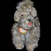 Steiff Poodle Dog