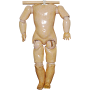 Composition Jointed  Doll Body