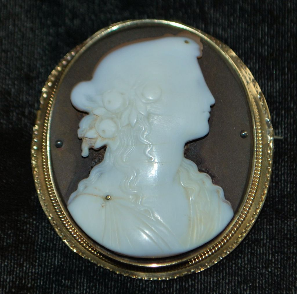 Victorian Portrait Cameo Brooch, Gold Frame, c. 1870