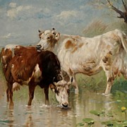 """Cattle in the Stream"" Henry Schouten"