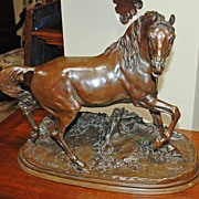 Signed Bronze Stallion Sculpture