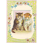Victorian Trade Card - Kittens on Sample Stock Card