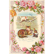 Victorian Trade Card - Cat and Kittens on Sample Stock Card