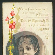 Victorian Advertising Trade Card - Thos. W. Emerson Co. Seed Chart - Boston, MA