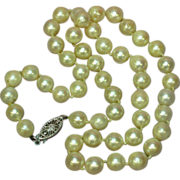 "Akoya Creamy White Cultured Pearls & 14K 16"" Vintage Necklace"