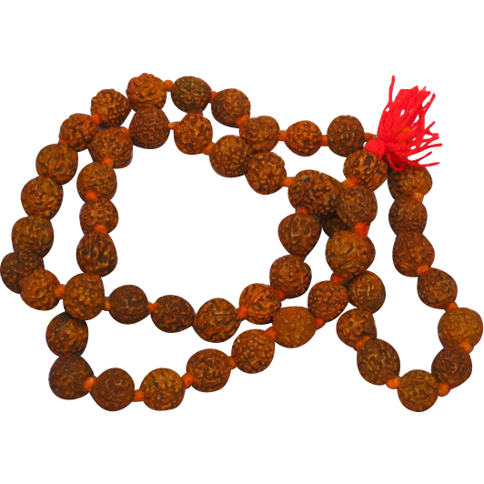 50% OFF SALE Prayer Beads Hand Knotted Indigenous Seed Pods Necklace