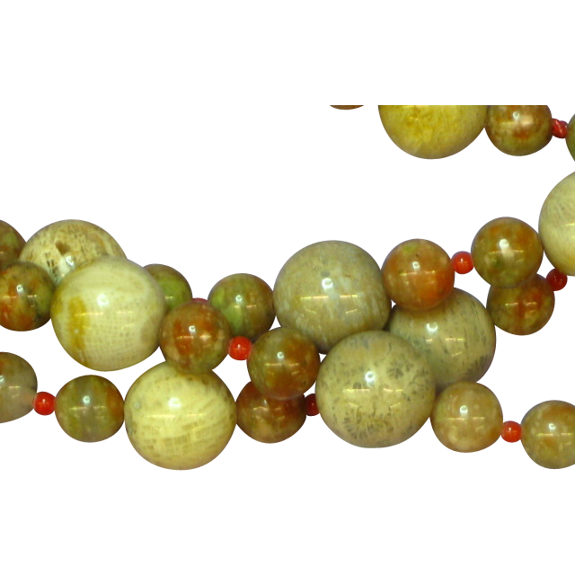 Magnificent Fossilized Coral, Flower Jasper and Red Coral Necklace