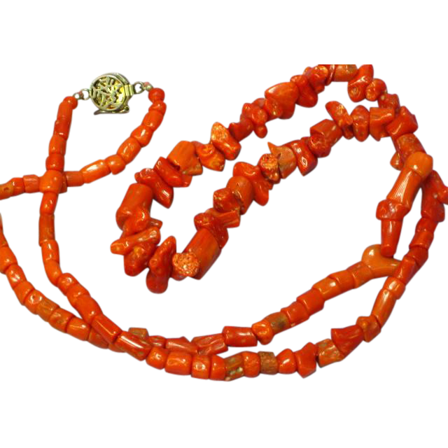 Coral Early Single Strand Museum Quality Mediterranean Sardinian Coral with Sterling Silver Clasp Necklace