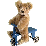 "3 1/2"" Steiff Original Teddy Bear with Kilgore Trike"