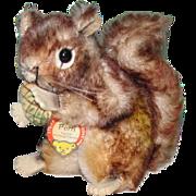 "5"" Steiff PERRI Squirrel Walt Disney Productions Bright & Clean"