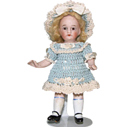 Adorable Dollhouse Girl ~ Glass Eyes & Jointed All Bisque Doll