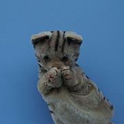 Vintage Kitten Puppet. Steiff?