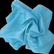 Gorgeous Vintage Silk in Robin's Egg Blue