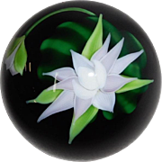Orient and Flume Paperweight Water Lily on black