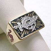 Shriners Ring 14k Gold DIAMOND Accents Colorful Enamel 13.4 Grams