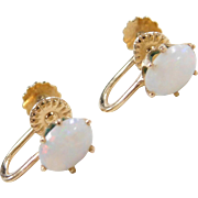 Vintage 14k Gold Opal Screw Back Earrings