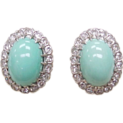 Persian Turquoise & 1.0 ctw Diamond Earrings Screw Back